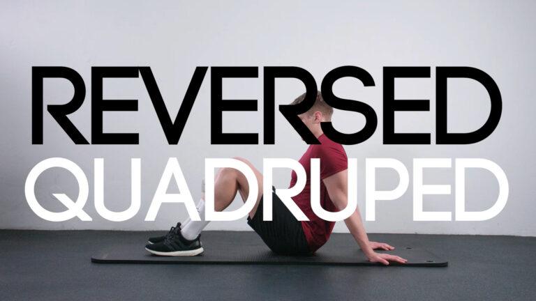 Reversed Quadruped